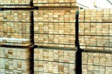 Saw Timber For Sale-Coniferous breeds (Pine, Cedar, Larch, Fir)