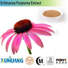 Echinacea Purpurea Powder Polyphenols 2%-9% by UV