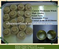 Canned Mushroom Food Products