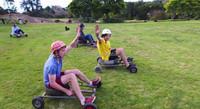 Grass skiing karts Grass Kart Challenge grass skis for sale