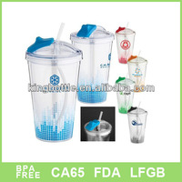 2015 hot sell gift items 16oz double wall plastic water bottle tube