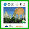 Manufacturer supply 100% Pure Natural Yucca Extract powder