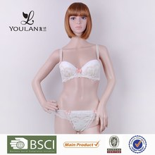 Made in China Breathable Hot Girl Lace Ladies Sheer Sexy Panties