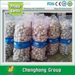 garlic factory directly 5.5cm 10kg/mesh bag normal white garlic