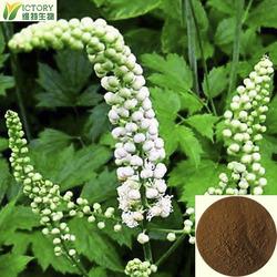 100% nature black cohosh extract powder / black cohosh p.e.