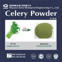 Fruits and vegetable powder Celery Juice Powder