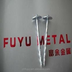 electro galvanized umbrella roofing nail factory