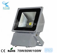 china factory qualified outdoor led lamp IP65 110 volt garden led flood light