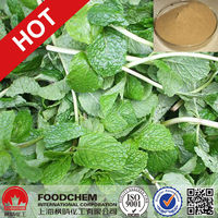 100% Natural Thyme Extract Thymol