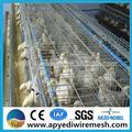 Granja hot venda camada gaiolas de aves