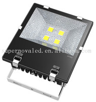 Guangdong 200W LED Flood Light waterproof IP65 meanwell driver