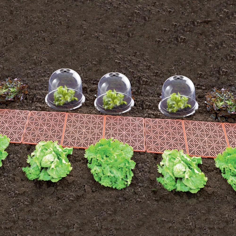 En plastique jardin cloche cloche cloche pour l gumes de - Cloche en plastique transparent jardin ...