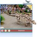 Alta calidad de simulación de esqueleto de dinosaurio para exterior exposición