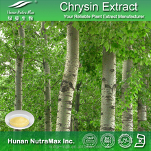 GMP Manufacturer Chrysin Extract 98% 99% Forskolin By HPLC