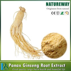 GMP Factory 100% Natural Ginseng Root Extract, ginseng powder,Ginseng Extract Powder