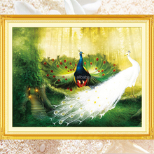 High quality 5d diy diamond painting peacock manufacturer&exporter