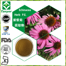 reliable quality Echinacea Herb P.E. 4% polyphenols UV