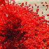 100% goji berry juice concentrate lycium ruthenicum murray