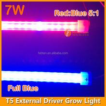 Full spectrum flower cultivate led T5 tube grow lights 2ft