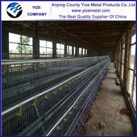 alibaba express chicken egg layers equipment/kenya distributors