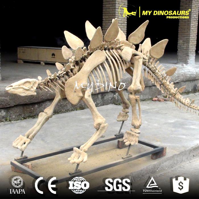 stegosaurus  skeleton5.jpg