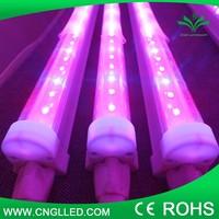 SD 16 led grow light t8 blue/red led plant grow light tube t8 blue/red led plant grow light tube