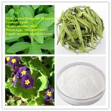 100%Natural Stevia/stevia e960