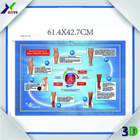 wall chart for children education 2014 China factory