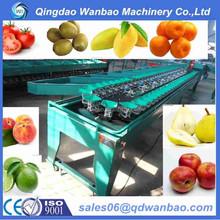 Reasonable price factory produce fruit classifier onion sorting machine