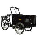 2015 carga triciclo elétrico