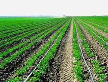 Tierra cultivos industriales de riego por goteo equipo