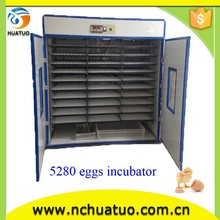 Fully automatic ostrich feather fertile quail eggs incubator On promotion HT-5280