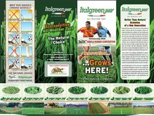 artificial grass from italy - for sports
