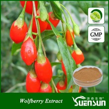 organic plant extract ning xia dried goji berry