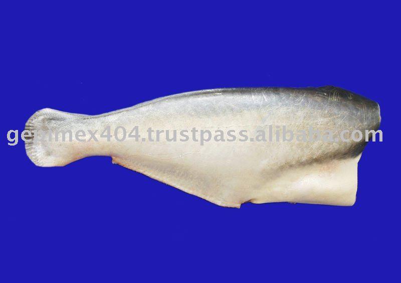 Mariscos, pescado congelado, pangasius, Basa peces