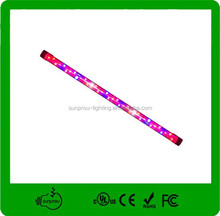Nome científico de todas as frutas levou crescer espectro completo de luz com CE ROHS FCC