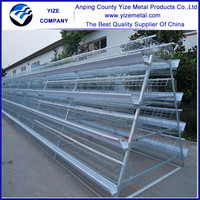 high quality automatic chicken manure removal system /poutry layers cage export to Tanzania