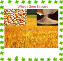 100% Natural Organic Wheat Germ Extract/Malt Extract 10:1,20:1,30:1
