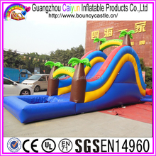 Top Sale Commercial Inflatable Water Slides