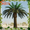 Plastic date palm trees prices wedding decorations fake large plastic tree and plants wholesale