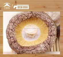 ad dried mushroom cuts Dried shiitake mushrooms ad dried mushroom cuts