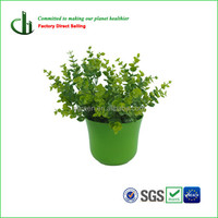 Cheap flower pots, plant pots, house decoration plant