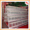Automatic qualified chicken layer cage for poultry farm