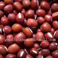 New Crop 3.5mm+ 5.0mm+ Red Field Peas