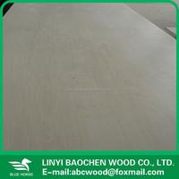 birch plywood home depot