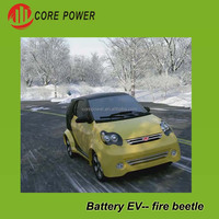 Pure electrical power car two carts 4 seats green vehicle