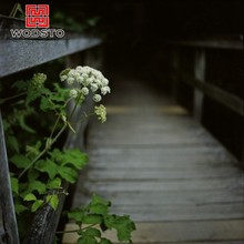 Decorative preserved wood like for Ecological Park decking ground