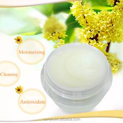Alpha Arbutin Antioxidant And Moisturizing Facial Cleanser Cream