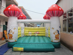 Factory supply inflatable combo bouncer with CE approved for outdoor use