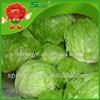 Iceberg enterprise names lettuce artificial vegetables for sale iceberg crystal